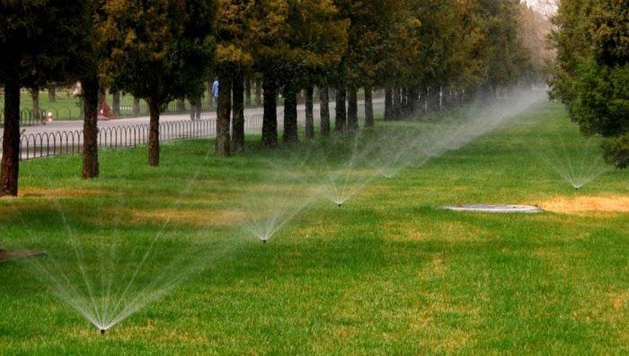 Автоматический полив для сада.