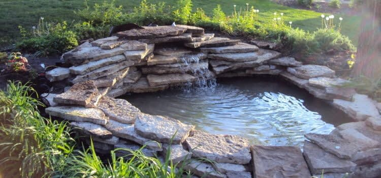Декоративный пруд во дворе