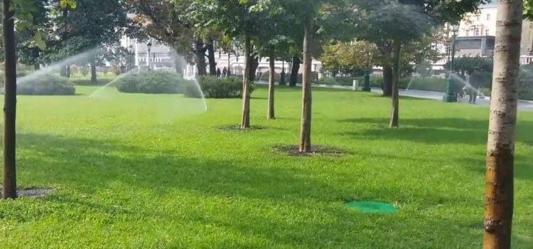 Автоматический полив для сада, автополив деревьев